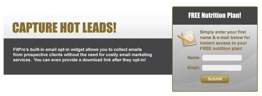 Capture Email Opt-ins