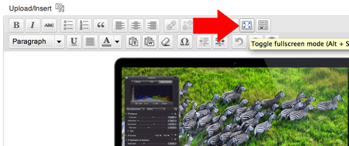 Fullscreen editor button